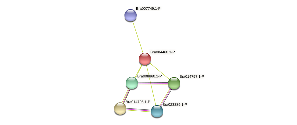 Bra004468 protein (Brassica rapa) - STRING interaction network