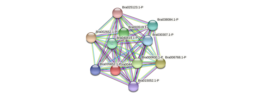 Bra004498 protein (Brassica rapa) - STRING interaction network