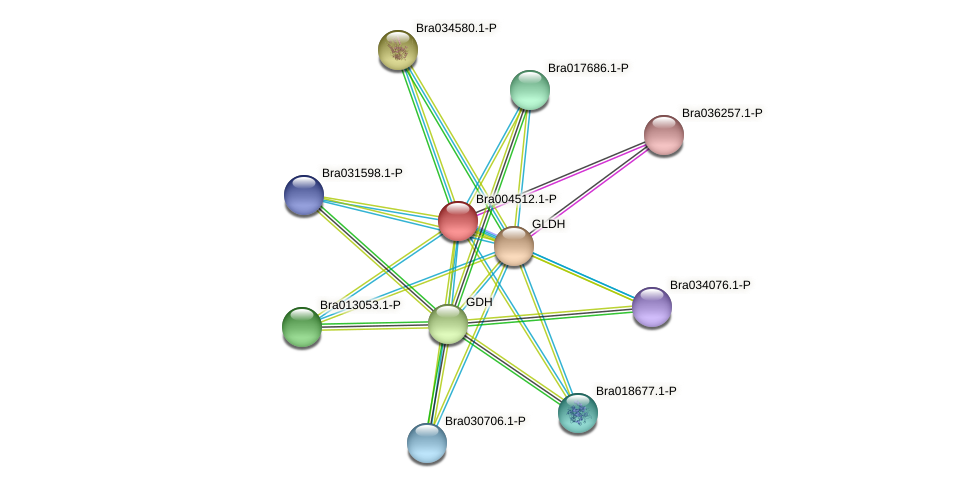 Bra004512 protein (Brassica rapa) - STRING interaction network