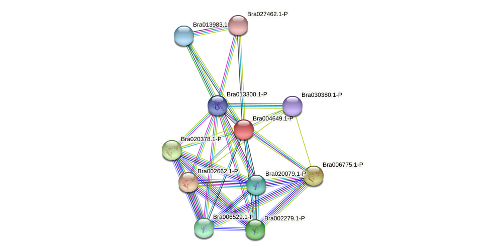 Bra004649 protein (Brassica rapa) - STRING interaction network