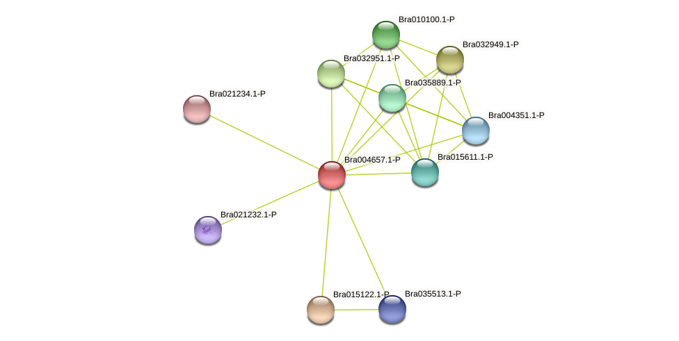 Bra004657 protein (Brassica rapa) - STRING interaction network