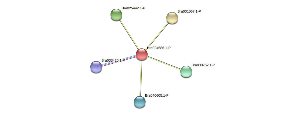 Bra004686 protein (Brassica rapa) - STRING interaction network