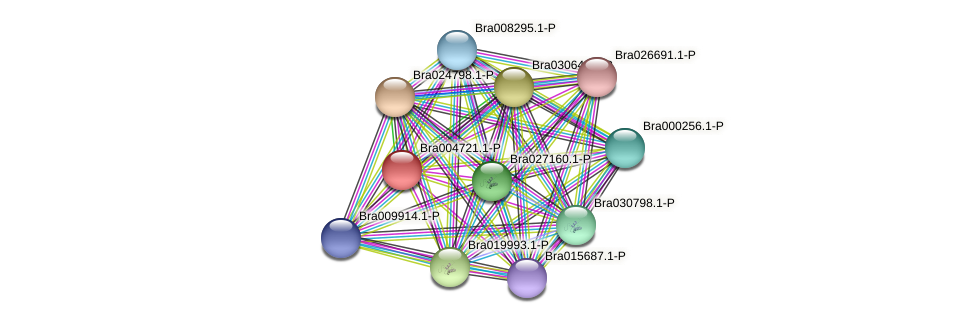 Bra004721 protein (Brassica rapa) - STRING interaction network