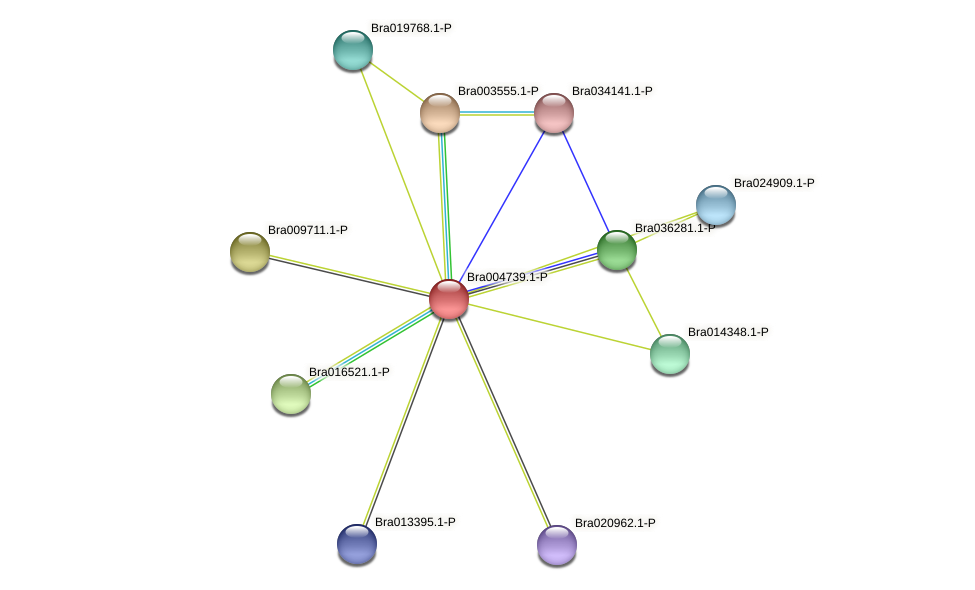 Bra004739 protein (Brassica rapa) - STRING interaction network