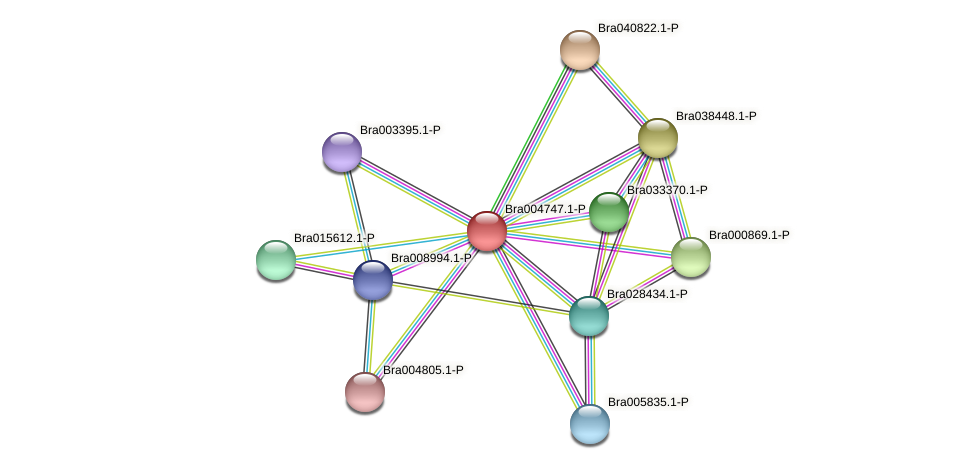 Bra004747 protein (Brassica rapa) - STRING interaction network