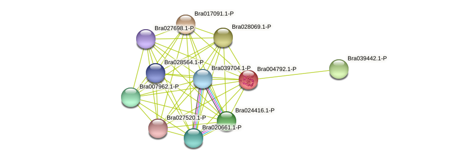 Bra004792 protein (Brassica rapa) - STRING interaction network
