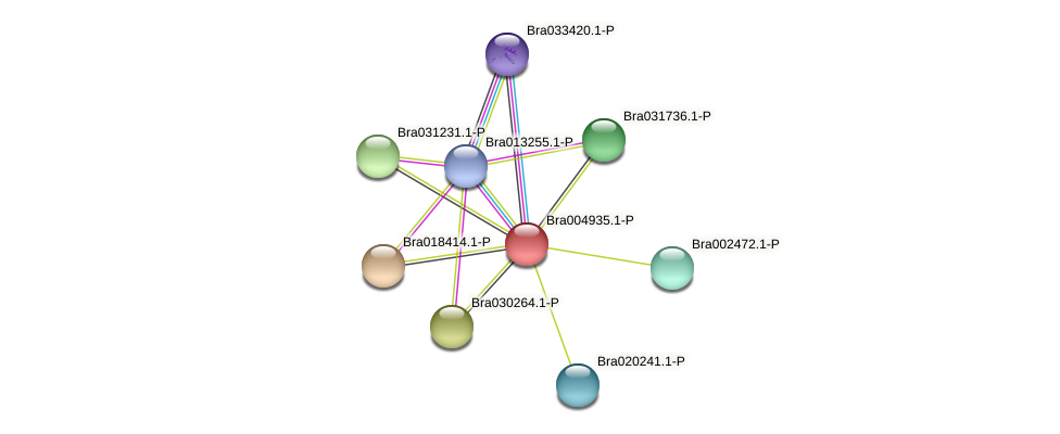 Bra004935 protein (Brassica rapa) - STRING interaction network
