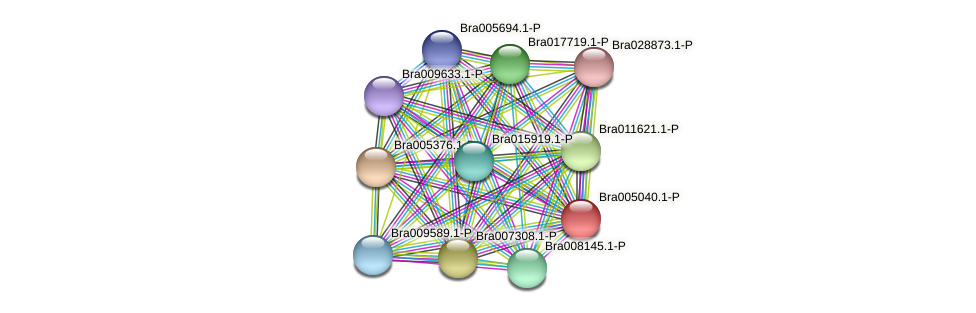 Bra005040 protein (Brassica rapa) - STRING interaction network