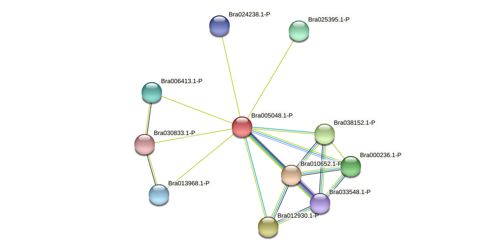 Bra005048 protein (Brassica rapa) - STRING interaction network
