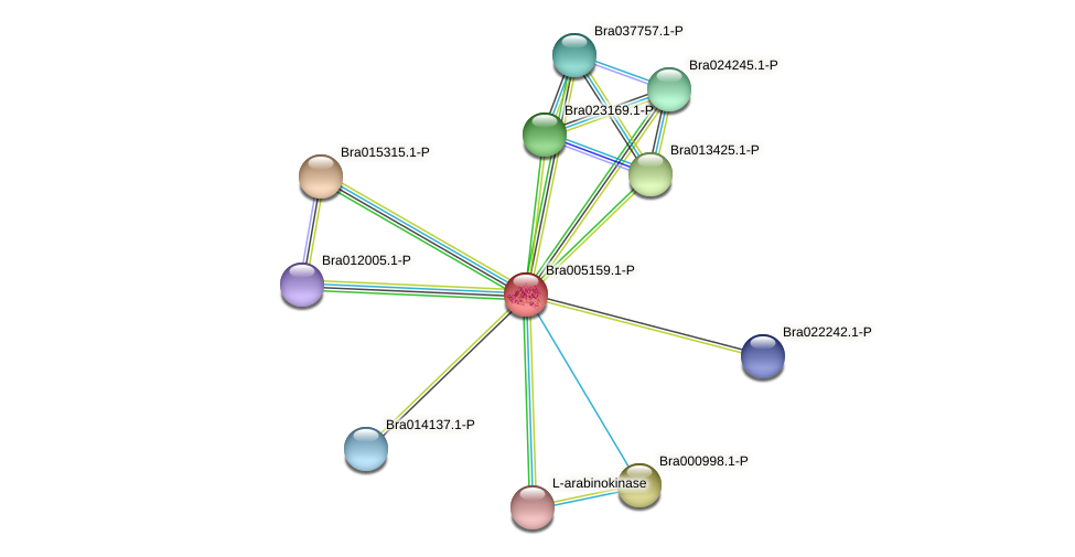 Bra005159 protein (Brassica rapa) - STRING interaction network