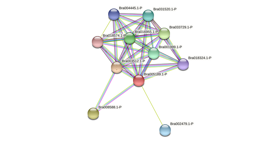 Bra005189 protein (Brassica rapa) - STRING interaction network