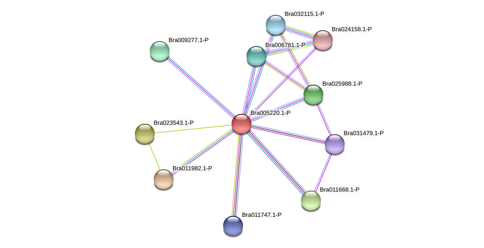 Bra005220 protein (Brassica rapa) - STRING interaction network