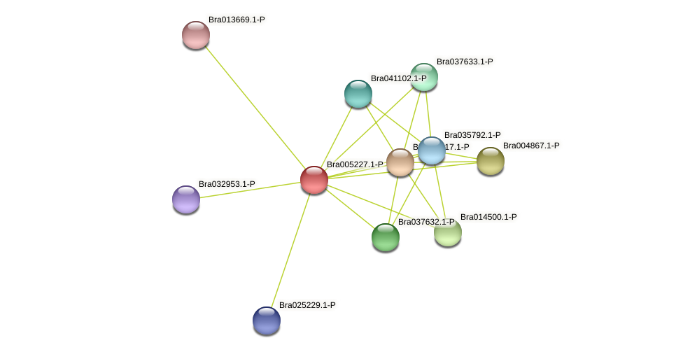 Bra005227 protein (Brassica rapa) - STRING interaction network