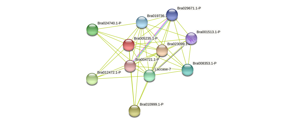 Bra005235 protein (Brassica rapa) - STRING interaction network
