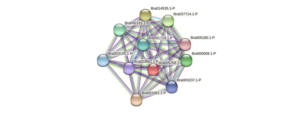 Bra005258 protein (Brassica rapa) - STRING interaction network