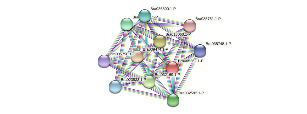 Bra005262 protein (Brassica rapa) - STRING interaction network