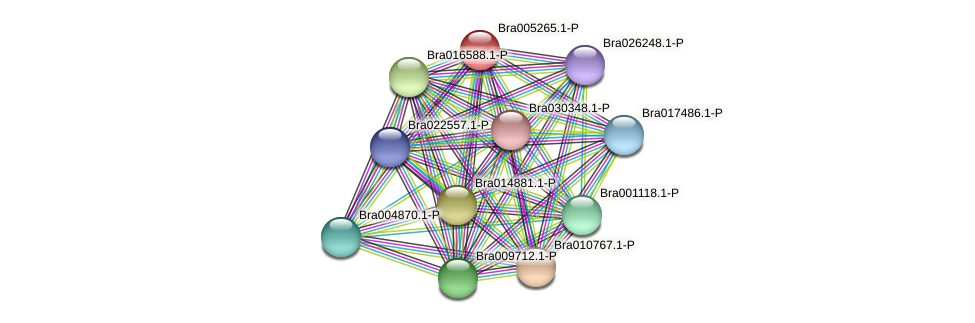 Bra005265 protein (Brassica rapa) - STRING interaction network