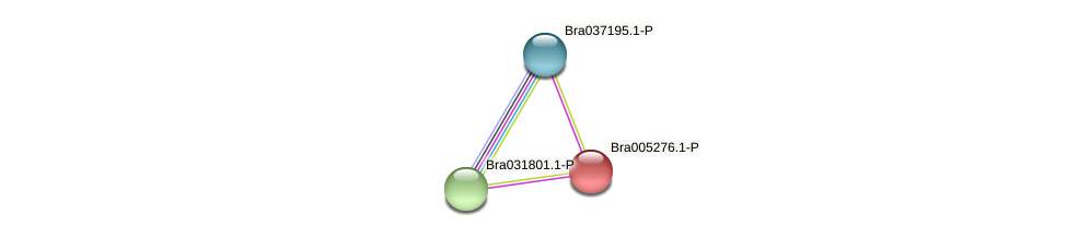 Bra005276 protein (Brassica rapa) - STRING interaction network