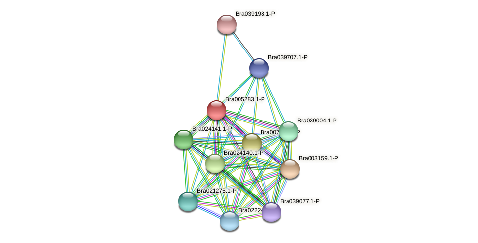 Bra005283 protein (Brassica rapa) - STRING interaction network