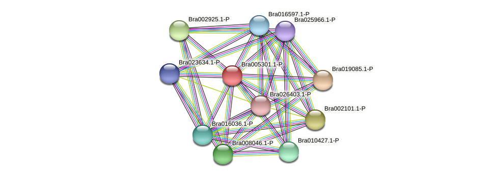 Bra005301 protein (Brassica rapa) - STRING interaction network