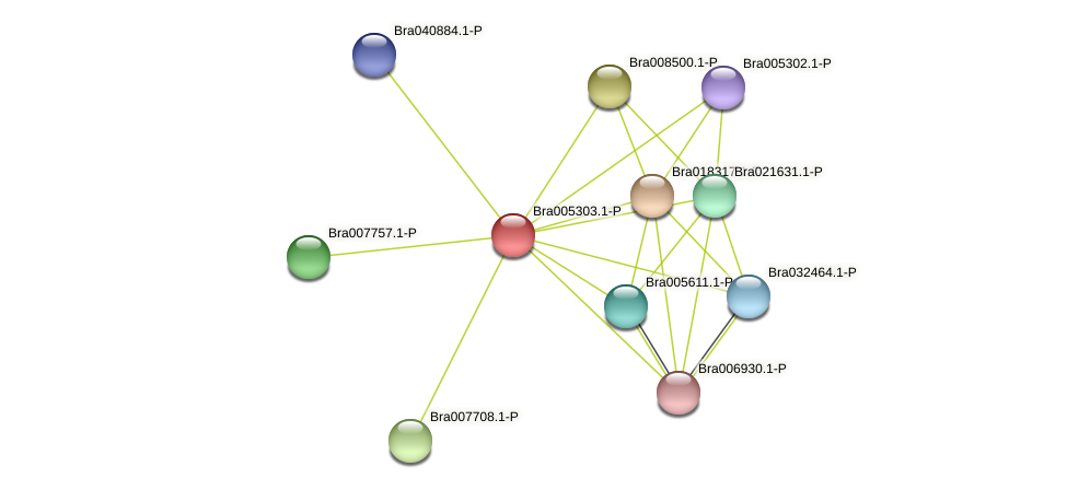 Bra005303 protein (Brassica rapa) - STRING interaction network