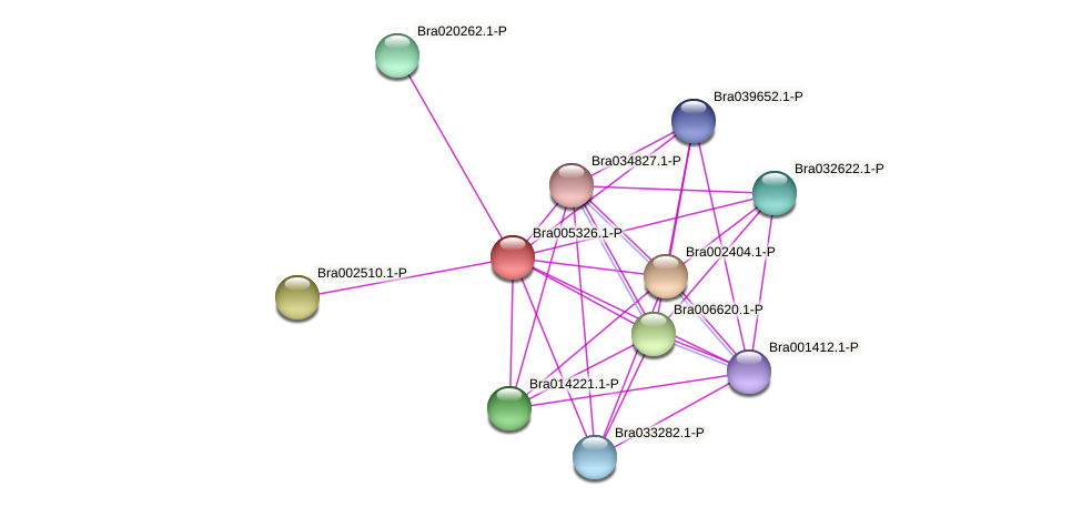 Bra005326 protein (Brassica rapa) - STRING interaction network