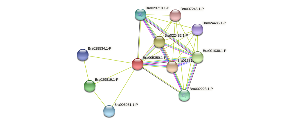 Bra005350 protein (Brassica rapa) - STRING interaction network