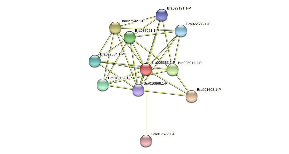 Bra005353 protein (Brassica rapa) - STRING interaction network