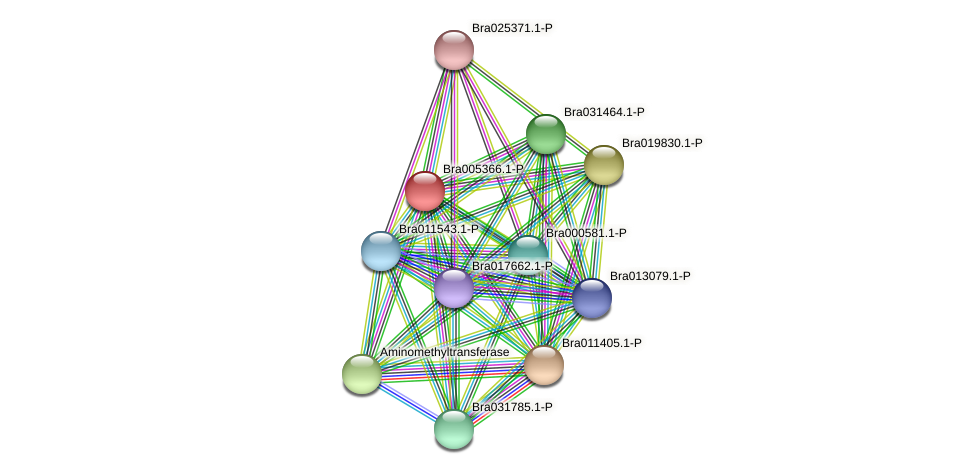 Bra005366 protein (Brassica rapa) - STRING interaction network