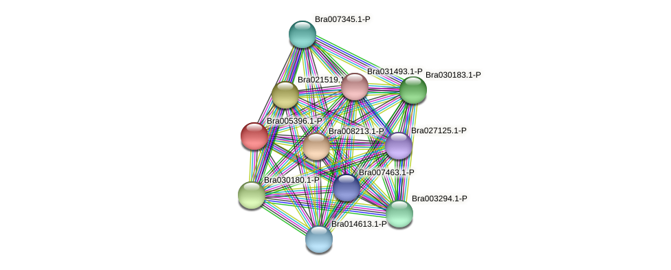 Bra005396 protein (Brassica rapa) - STRING interaction network