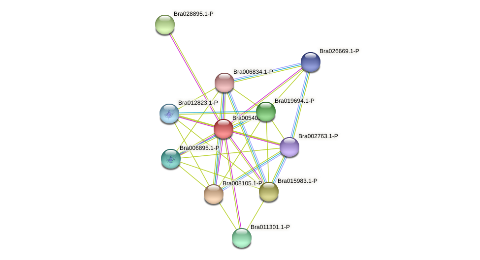Bra005403 protein (Brassica rapa) - STRING interaction network