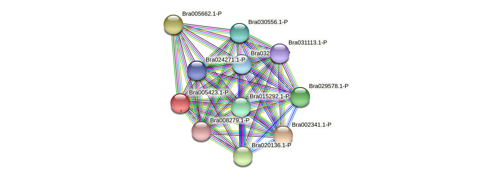 Bra005423 protein (Brassica rapa) - STRING interaction network