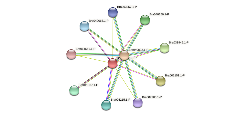 Bra005428 protein (Brassica rapa) - STRING interaction network