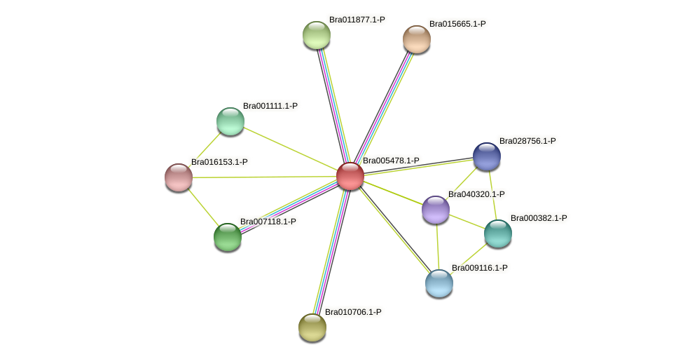 Bra005478 protein (Brassica rapa) - STRING interaction network