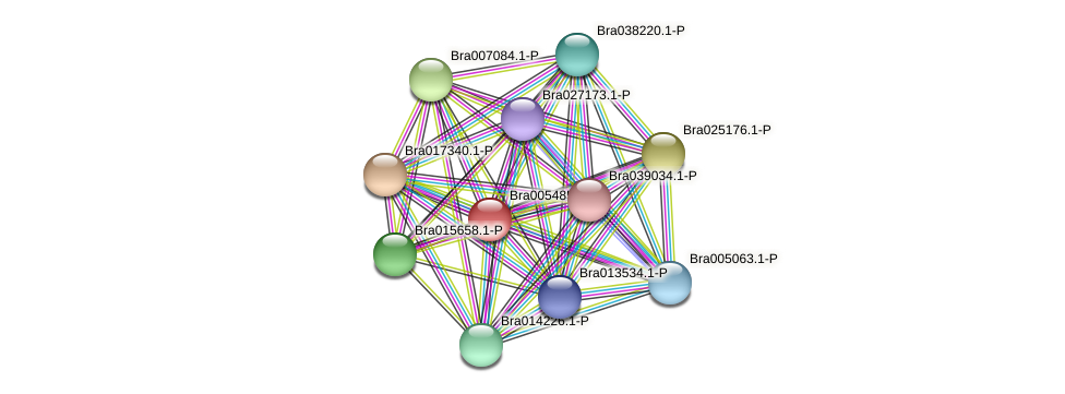 Bra005485 protein (Brassica rapa) - STRING interaction network