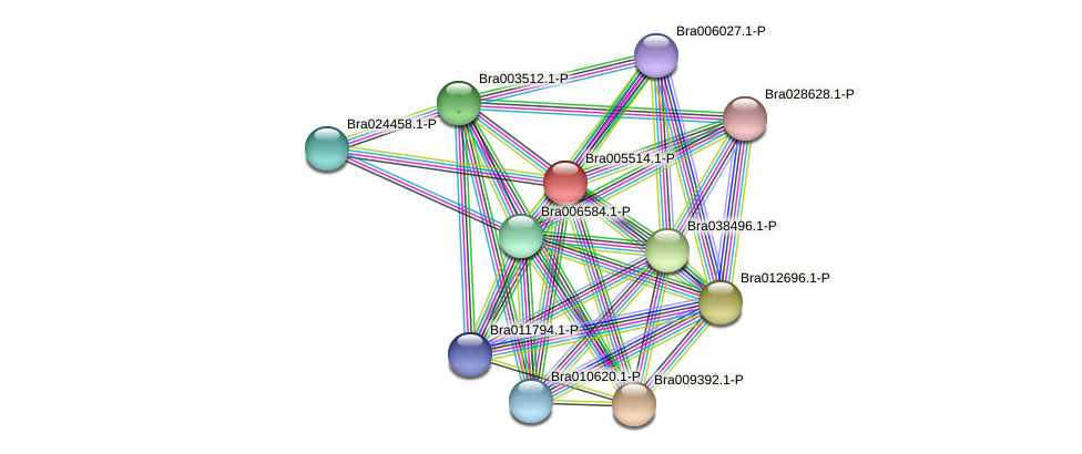 Bra005514 protein (Brassica rapa) - STRING interaction network