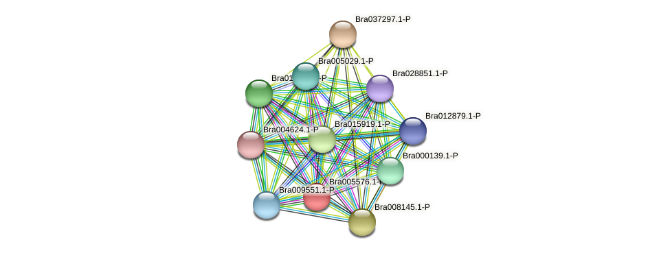 Bra005576 protein (Brassica rapa) - STRING interaction network