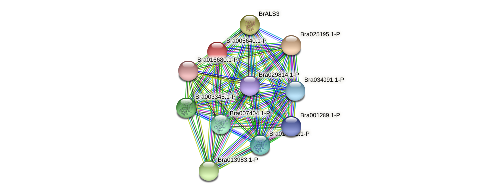 Bra005640 protein (Brassica rapa) - STRING interaction network