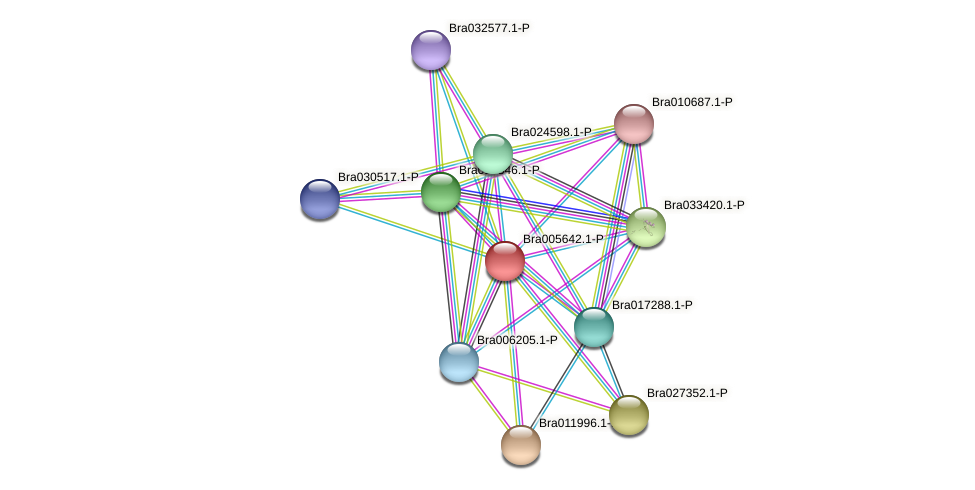 Bra005642 protein (Brassica rapa) - STRING interaction network