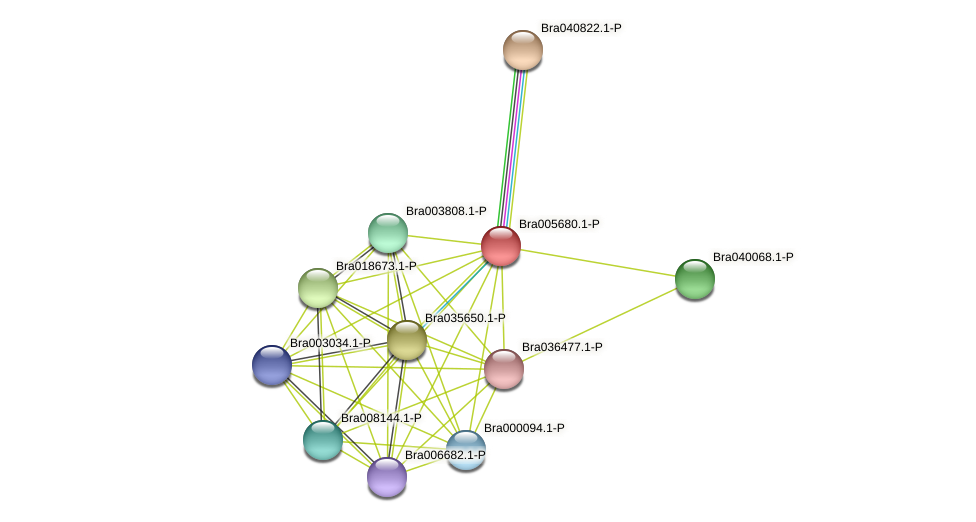 Bra005680 protein (Brassica rapa) - STRING interaction network