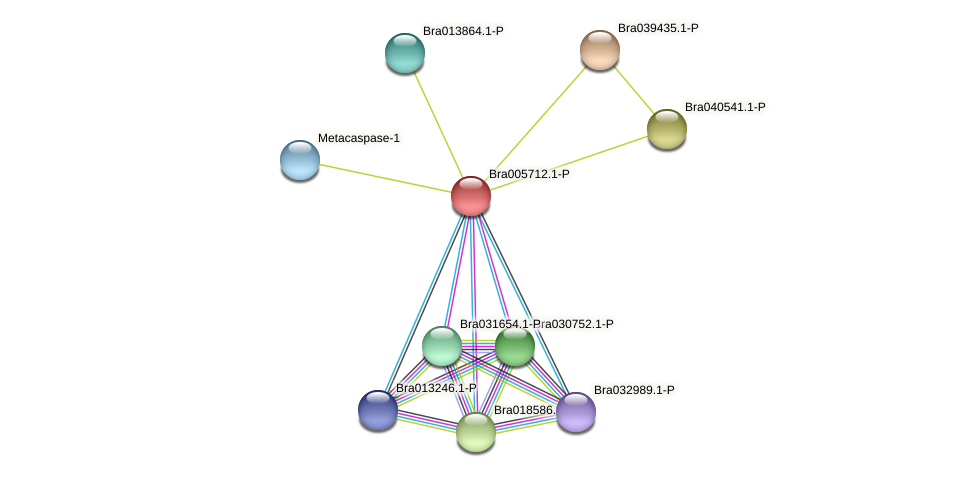 Bra005712 protein (Brassica rapa) - STRING interaction network