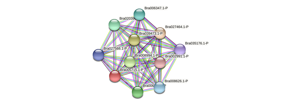 Bra005715 protein (Brassica rapa) - STRING interaction network