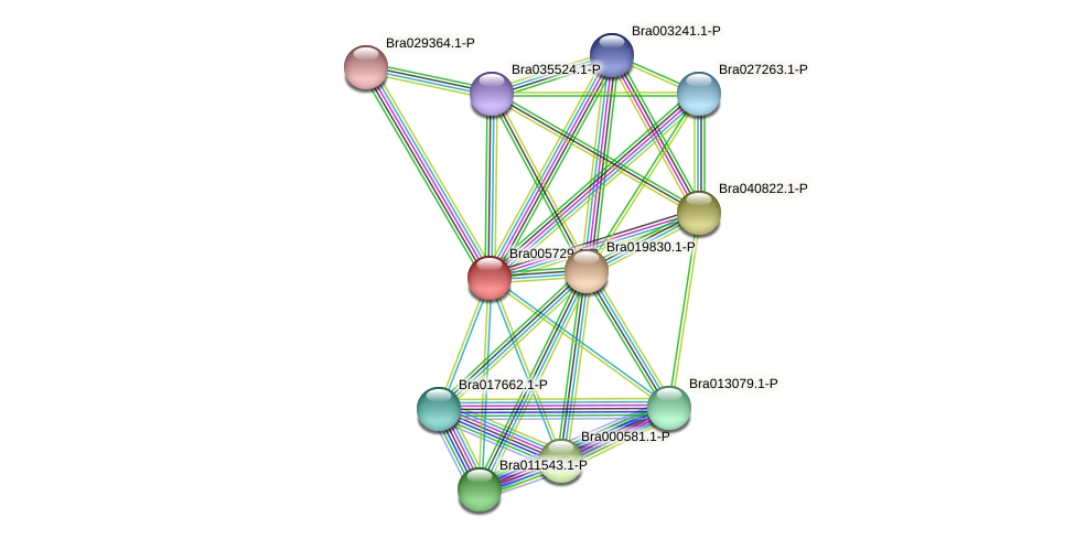 Bra005729 protein (Brassica rapa) - STRING interaction network