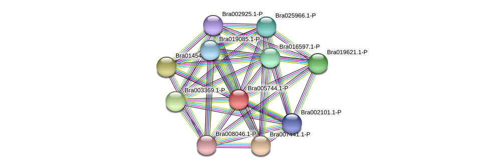 Bra005744 protein (Brassica rapa) - STRING interaction network