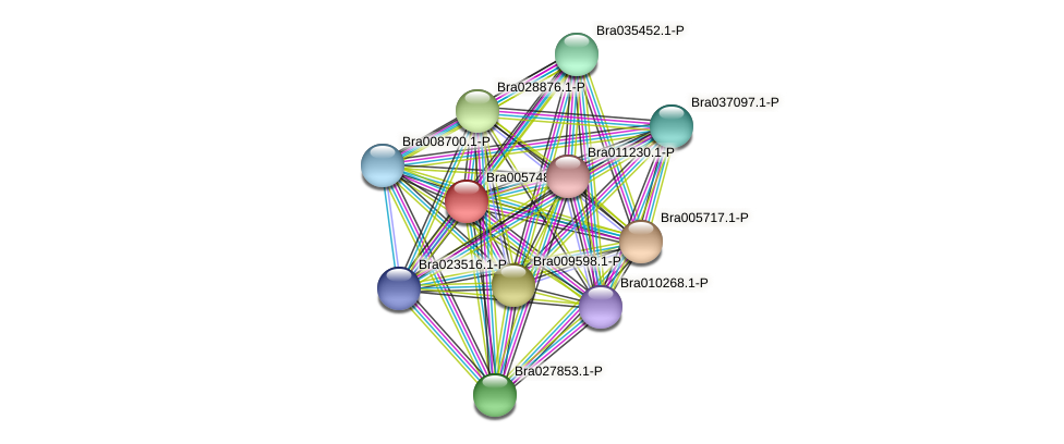 Bra005748 protein (Brassica rapa) - STRING interaction network