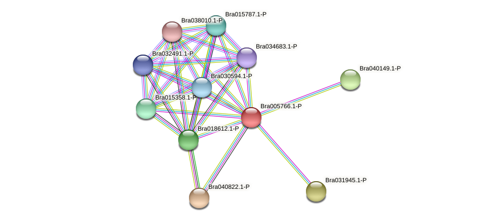 Bra005766 protein (Brassica rapa) - STRING interaction network