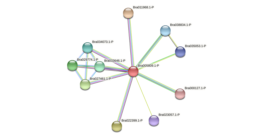 Bra005809 protein (Brassica rapa) - STRING interaction network