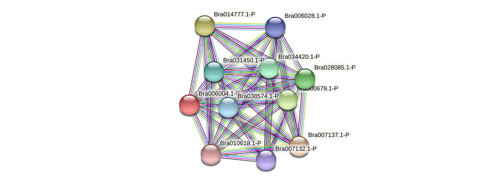 Bra006004 protein (Brassica rapa) - STRING interaction network