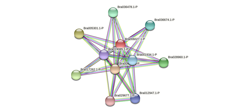 Bra006027 protein (Brassica rapa) - STRING interaction network