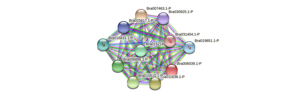 Bra006039.1-P protein (Brassica rapa) - STRING interaction network
